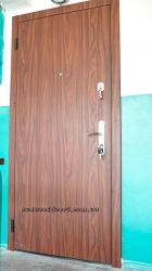 door_metallic8